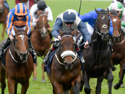 Qipco Champions Day: Doing a Solow as Muhaarar crowned king