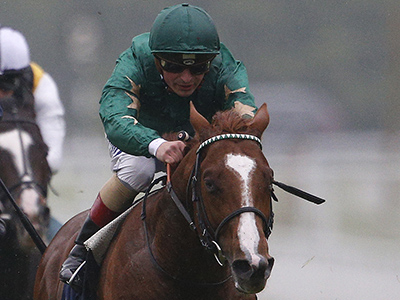 Del Mar options for Decorated Knight