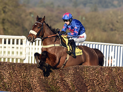 Cue Card heads for more Ascot glory