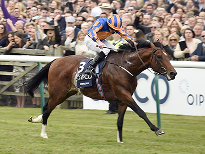 Guineas review