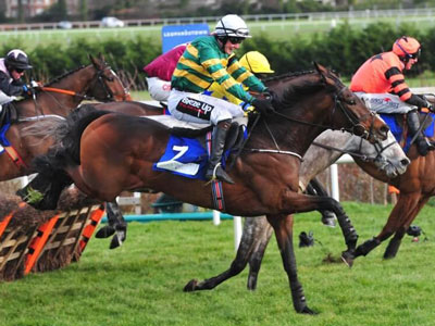 Slevin Towers above Leopardstown rivals