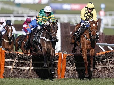 Cheltenham wrap up