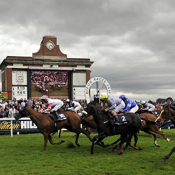 Ripon 16th Aug 2014 Tipping Challenge Result