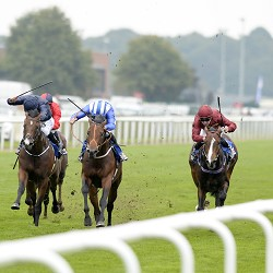 Leger 2014 Tipping Challenge Result Saturday