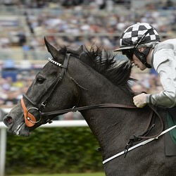 Leger 2014 Tipping Challenge Result Friday