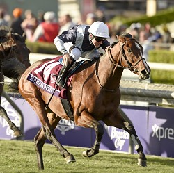 Breeders Cup 2014 Tipping Challenge Result Saturday