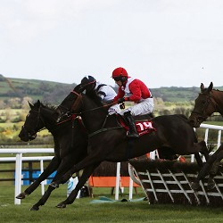 Punchestown 2015 Tipping Challenge Result Wednesday