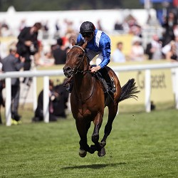 Ascot 2015 Tipping Challenge Result Friday