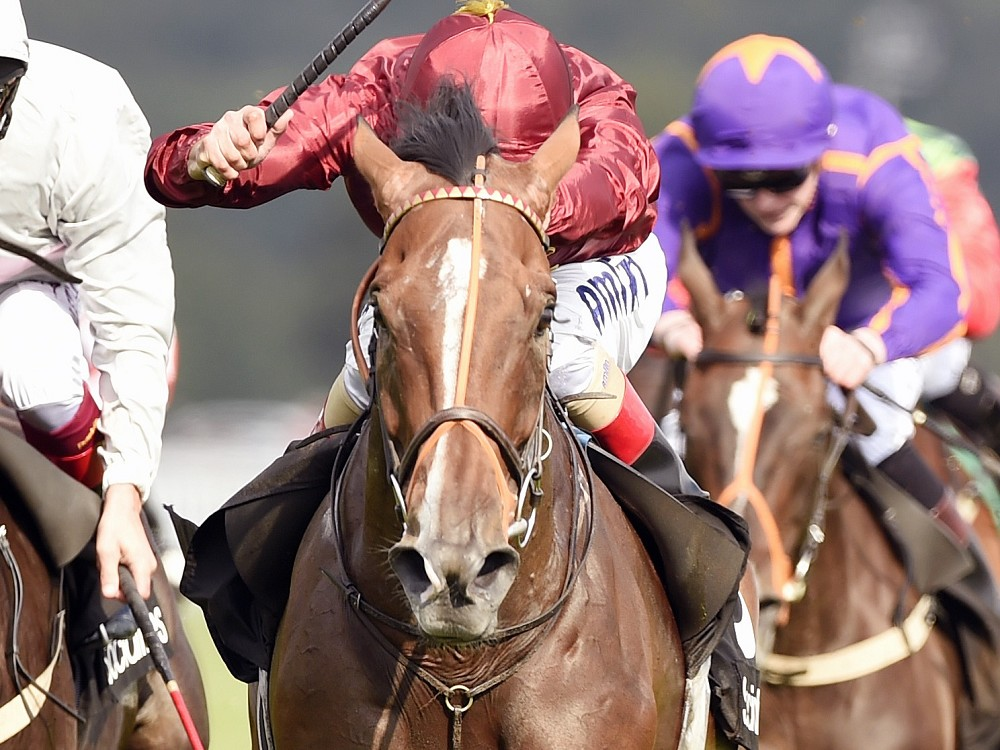 Leger 2015 Tipping Challenge Result Friday