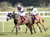 Punchestown 2016 Tipping Challenge Result Friday