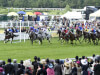 Ascot 2016 Tipping Challenge Result Thursday