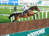 Min suffers 'bang on his knee' and misses Leopardstown test