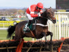 Fencing shelved for Buveur D'Air with team 'in agreement' on Champion Hurdle bid