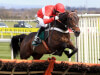 Nicky Henderson shifts focus as Buveur D'Air reverts to hurdling at Sandown