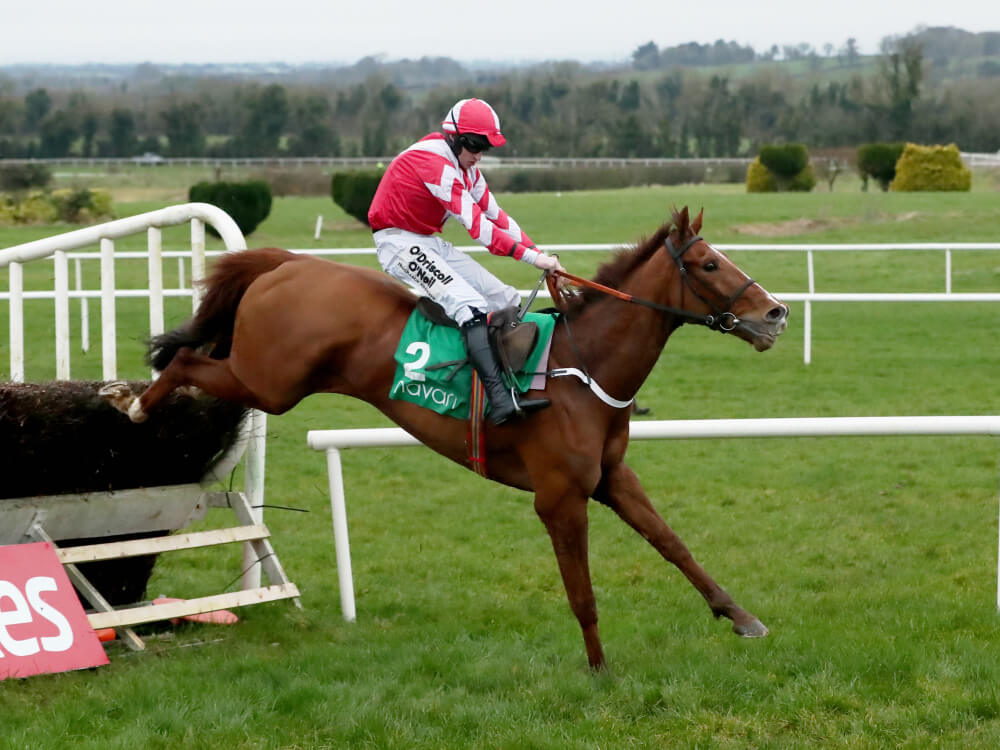 All-the-way Acapella Bourgeois enters RSA Chase picture after Navan romp