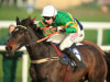Alan King plots County Hurdle assault with Winter Escape