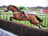 Injured Coney Island ruled out of Cheltenham Festival by Eddie Harty