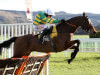 Defi Du Seuil stands ground in Triumph Hurdle for Philip Hobbs and JP McManus