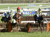 Gallant Willoughby Court stars in Neptune at Cheltenham