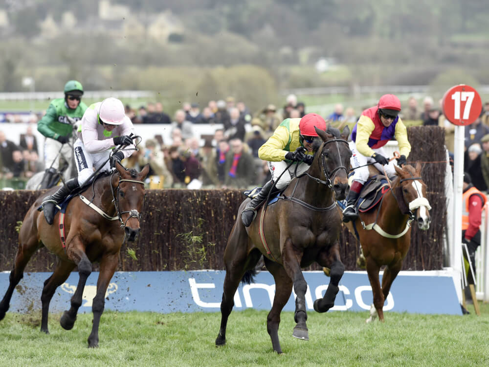 Super Sizing takes Gold medal for Ireland at Cheltenham