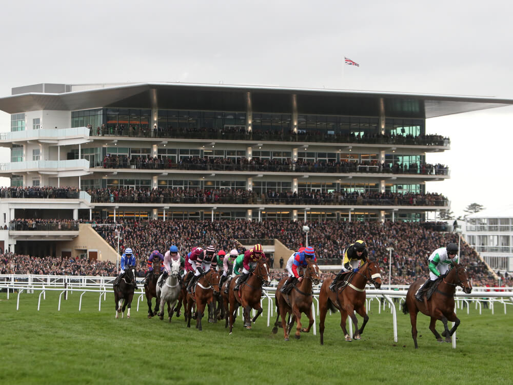 'Best ever Cheltenham' for bookmakers as punters floored on final day