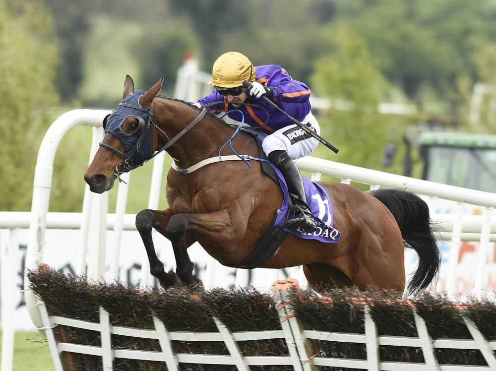 Punchestown 2017 Tipping Challenge Result Friday