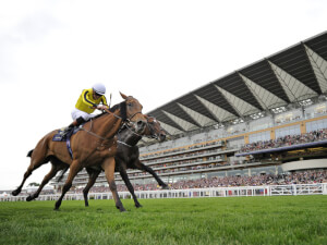 Ascot 2017 Tipping Challenge Result Thursday