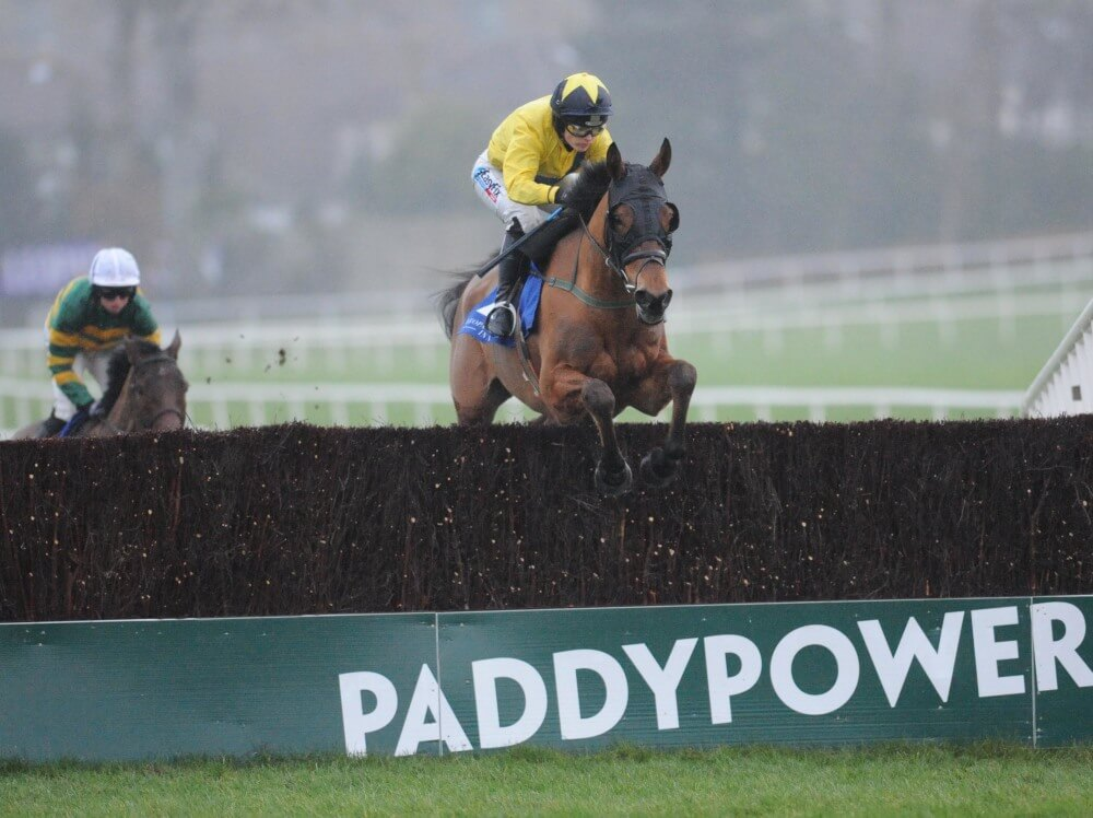 Foxrock all set for Foxhunter Chase at Cheltenham