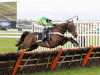 McManus' aces Buveur D'Air and Defi Du Seuil all set for weekend action