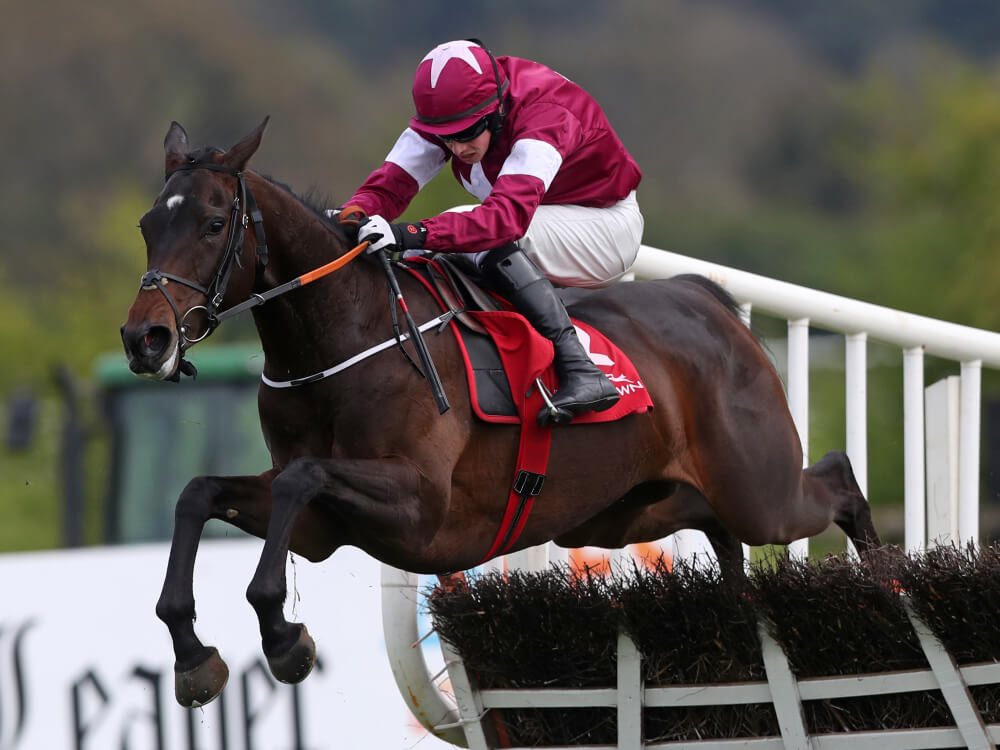 Apple's Jade to defend Mares' Hurdle crown at Cheltenham