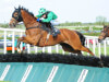 Long House Hall set for hurdles spin at Cheltenham ahead of Aintree assignment