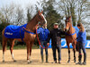 Colin Tizzard hanging fire on committing Cue Card to Gold Cup