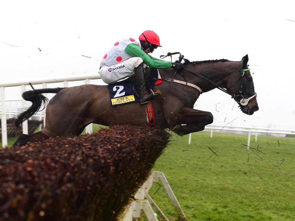 Cheltenham 'not the end of the world' for Drumconnor Lad