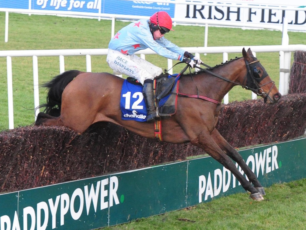 Liz Doyle eyeing Plate target at the Festival for Last Goodbye
