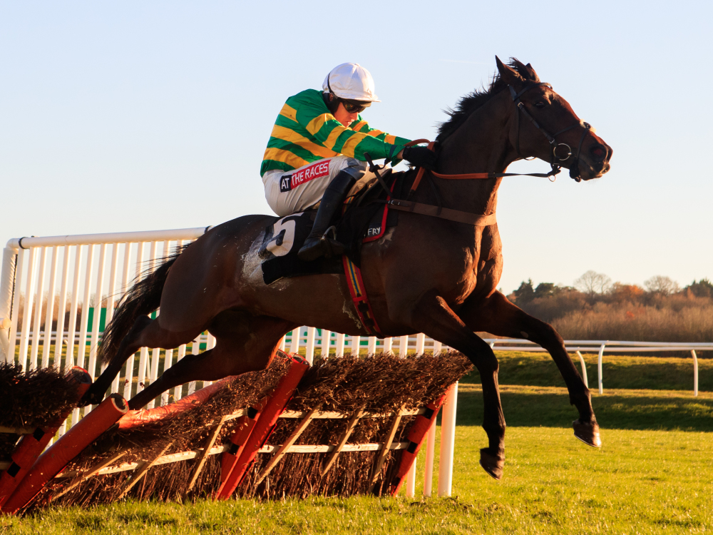 Harry Fry happy to have lower profile with Stayers' hope Unowhatimeanharry