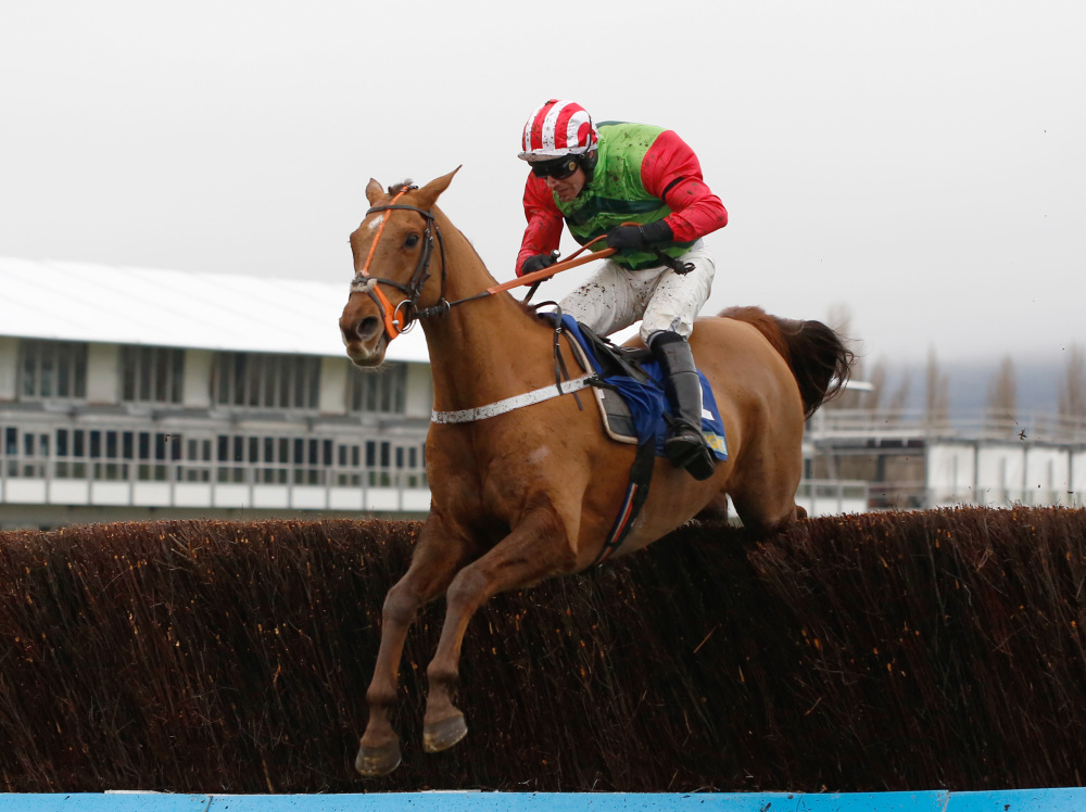 Definitly Red set for spin on Fahey's gallops as Ellison continues Gold Cup prep
