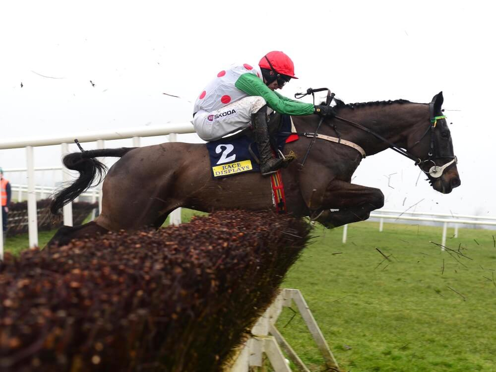 Adrian Keatley looks away from Cheltenham with Drumconnor Lad