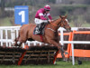 Super Samcro the star in Ballymore confirmations at Cheltenham