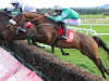 Presenting Percy and Monalee chasing RSA honours at Cheltenham Festival