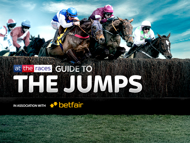 Welcome to our guide to the 2020/21 Jumps Season