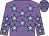 Mauve, light blue stars (The Stewkley Shindiggers Partnership)
