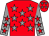 Red, grey stars, grey sleeves, red stars (Mr M Clementson)