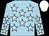 Light blue, white stars, white cap (Frank Hogan)