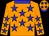 Dayglo orange, blue stars and collar, dayglo orange cap, blue stars and peak (Messrs B A Schwegmann & H F Schwegmann, T Herdon &)