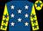 Royal blue, white stars, yellow sleeves, royal blue stars, yellow cap, royal blue star (Mr Andy Knowles)