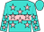 Turquoise, pink hoop, pink stars, turquoise cap (Z W P Stable, Inc And Non Stop Stable)