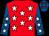 Red, white stars, royal blue sleeves, white stars, royal blue cap, red stars (Mr Joseph Swanson)