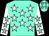 Aqua, white stars, aqua stars on white sleeves (Walter Bates)