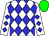 White body, blue diamonds, white arms, blue diamonds, green cap (T Killoran/l Carberry)
