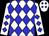 White body, blue diamonds, white arms, blue diamonds, white cap, blue diamonds (Mme C Zembra)